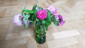 Flowers for 3rd July 2016