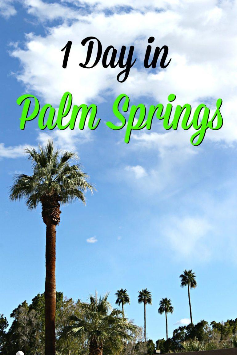 1 Day Palm