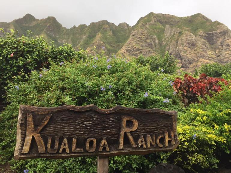 Kualoa Ranch 9