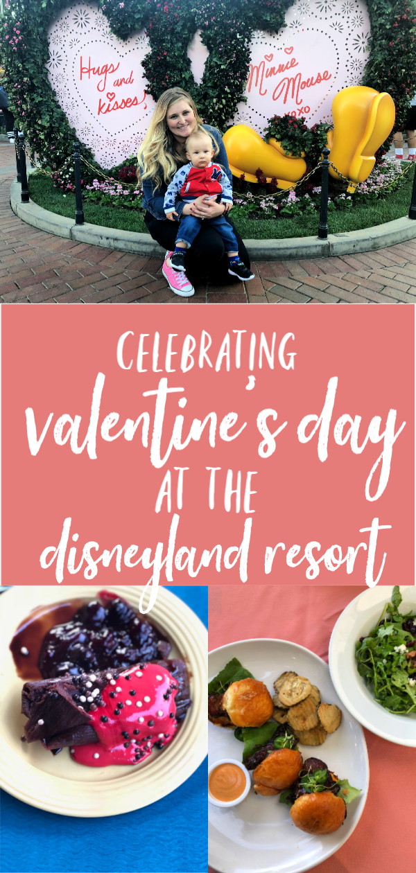 Disneyland Edited Pinterest