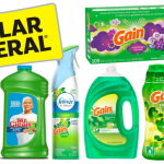 Dollar General:  Get Gain Wasted For Only $1.53 Each!!! (Detergent, Softener, Flings, Fireworks, Sheets, Air Effects and Dish Soap)