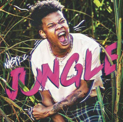 Nasty C Jungle download