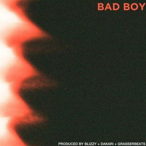 BAD BOY mp3 download