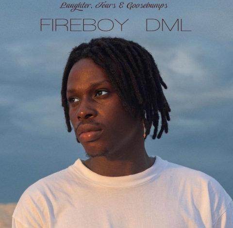 Fireboy DML Need You mp3