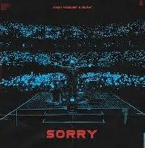 Alan Walker – Sorry ft. ISÁK