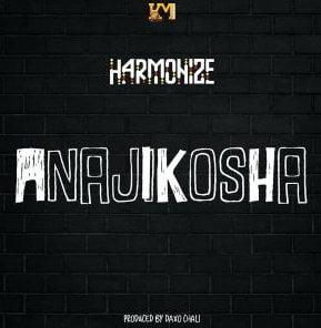 Harmonize – Anajikosha