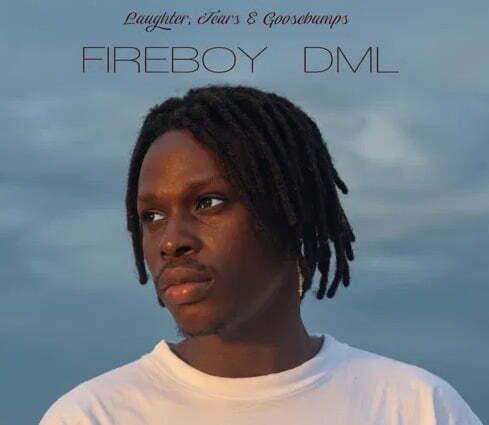 Fireboy DML Like I Do
