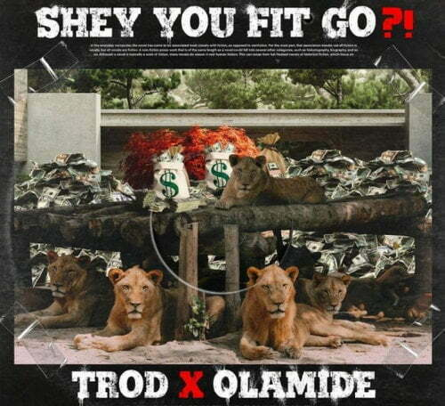 Trod Shey You Fit Go? download mp3