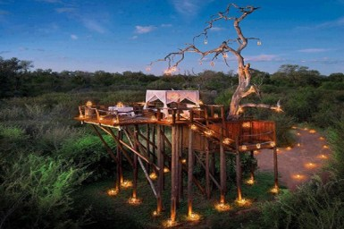 "#2 Lion Sands Private Game Reserve's Chalkley Treehouse: South Africa Every fairytale begins with ""Once Upon a Time"". This one begins with those four magical words and ends with Lion Sands Private Game Reserve's Chalkley Treehouse. Once upon a time, Guy Aubrey Chalkley set up camp in a majestic centuries-old Leadwood Tree to escape predators roaming the plains below. This fairy godmother of a tree that saved Chalkley was chosen to become an exquisite sanctuary for all travelers just outside South Africa's Kruger National Park. Completely open, the present-day tree house is a lavish platform under the African stars with all the comforts that you can experience at a five-star safari lodge. You are guided to the tree house at sunset where a picnic dinner awaits. And, as sunlight turns to moonlight, this protective tree holds you high above the predators of the night as you are free to take in your magical surroundings."