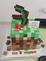 #minecraft temalı #dogumgunu partisi #birthday