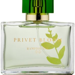 Hampton Sun Privet Bloom Eau de Parfum Spray