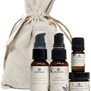 Annmarie Skin Care Balance Travel Kit - Normal Skin Care Set