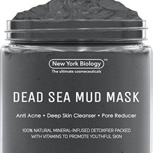 New York Biology Dead Sea Mud Mask for Face and Body - Natural Spa