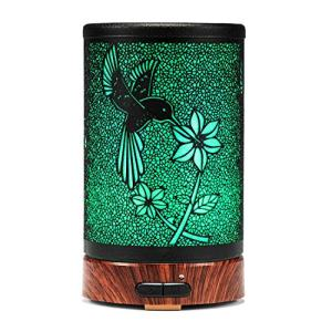 Essential Oil Diffuser ASAWASA Aroma Mist Humidifiers For Bedroom Home Office Livingroom,Metal Aromatherapy Diffusers with Waterless Auto Shut-Off Protection 7Colors Changed LED Nightlig (Hummingbird)