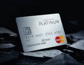 Pure+Solid-Credit-Cards-Platinum
