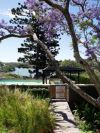 cate-blanchett-bulwarra-sydney-australie (6)