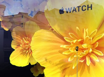 selfridges-londres-apple-watch (9)