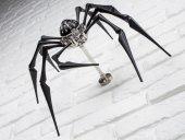 arachnophobia-mb&f