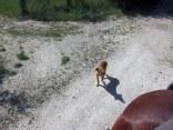 Jdombs-Travels-Corfu-3