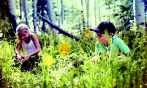 KidsinForest_2516_3769_low