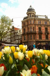 Tulip Time in Amsterdam