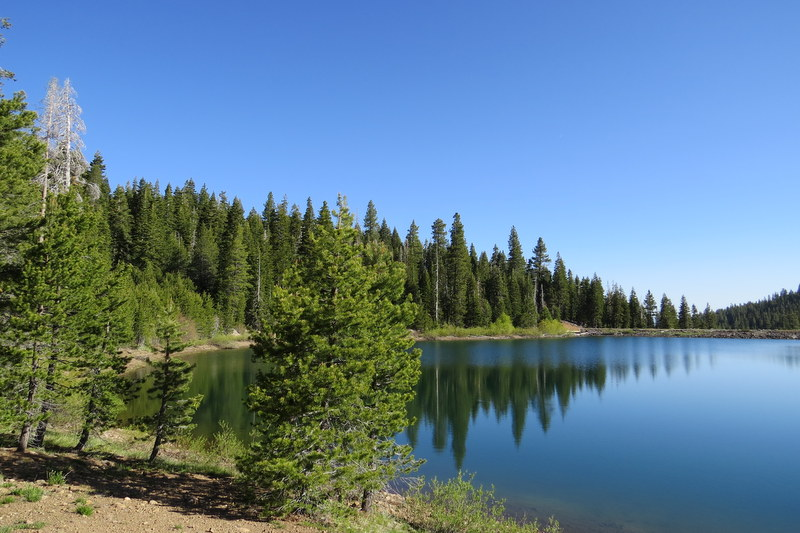 Guided Hike to Sawmill Lake