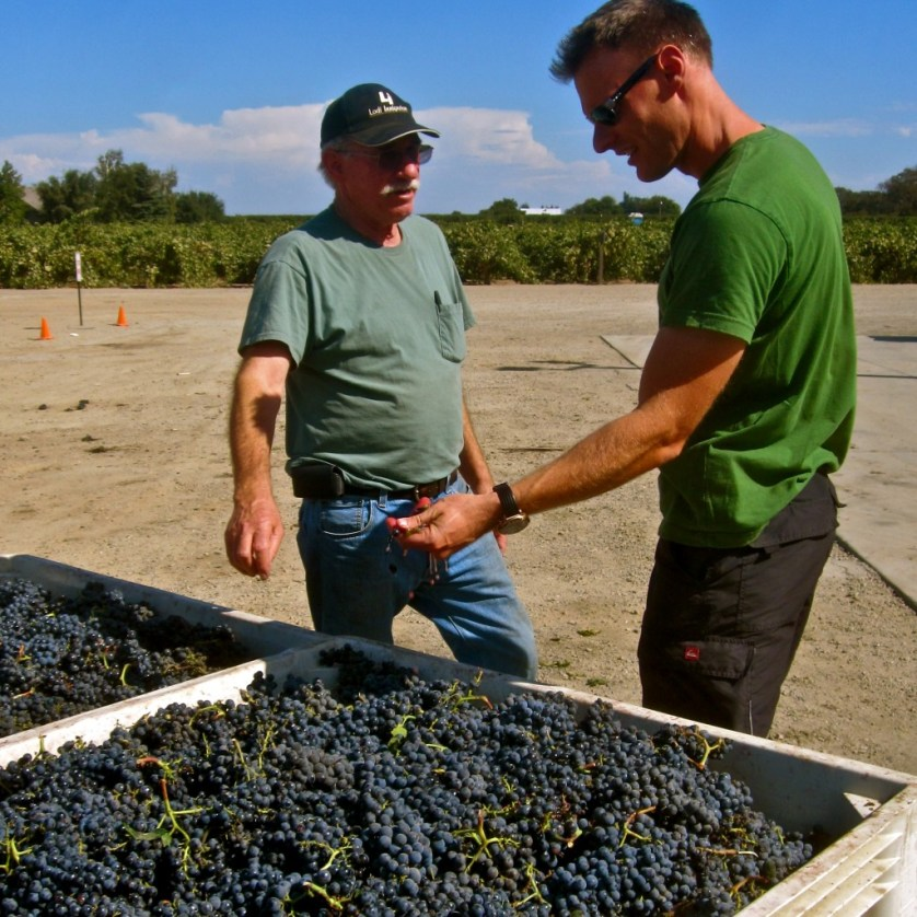 Borra Vineyards: Daring to be different in Lodi, California