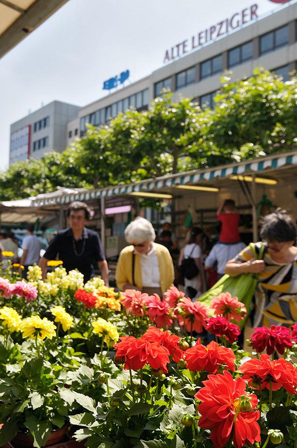 Farmers Market Konstabler