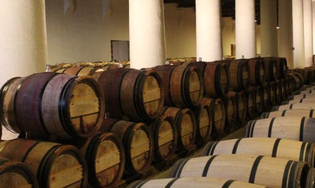 Impact of Temperature on Wine