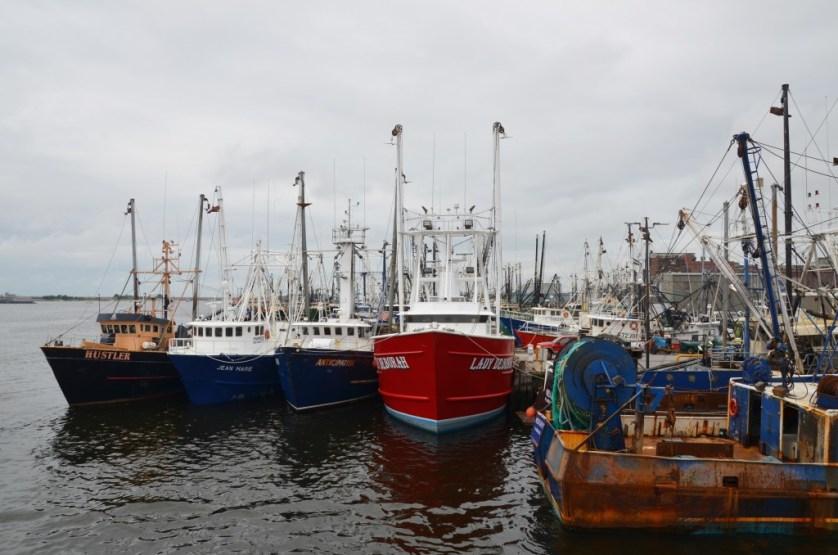 Fishing boats in dock.