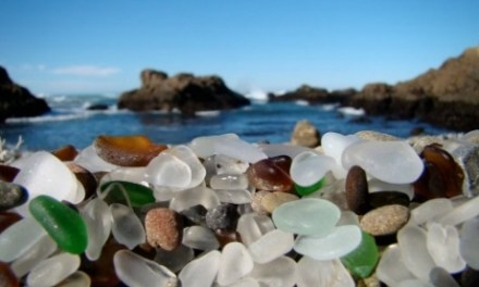 Mendocino County Events for Spring and Summer 2015
