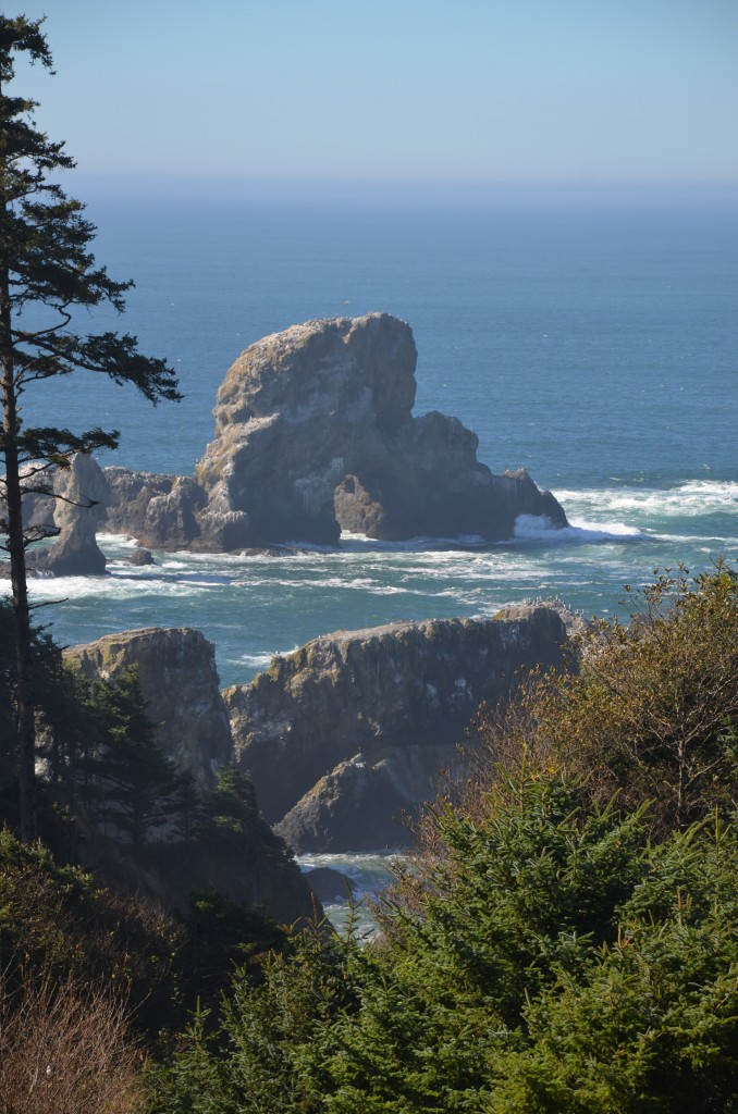 View at Ecola State Park