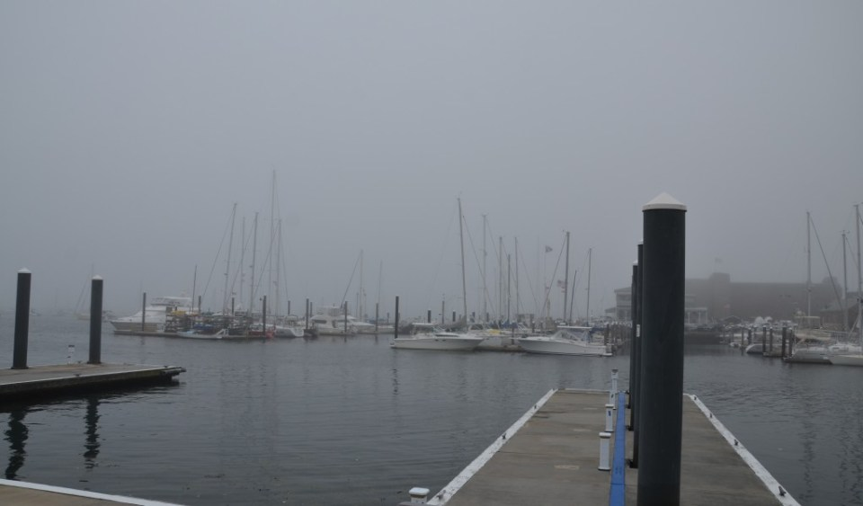 The foggy Newport Harbor.