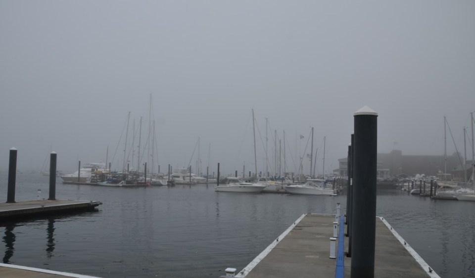 The foggy Newport Harbor.