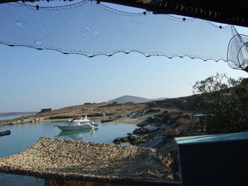 7-2015-The Quarantine of Delos-Aurelia10