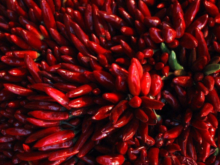 Red chilli peppers ©Nick Sturrock