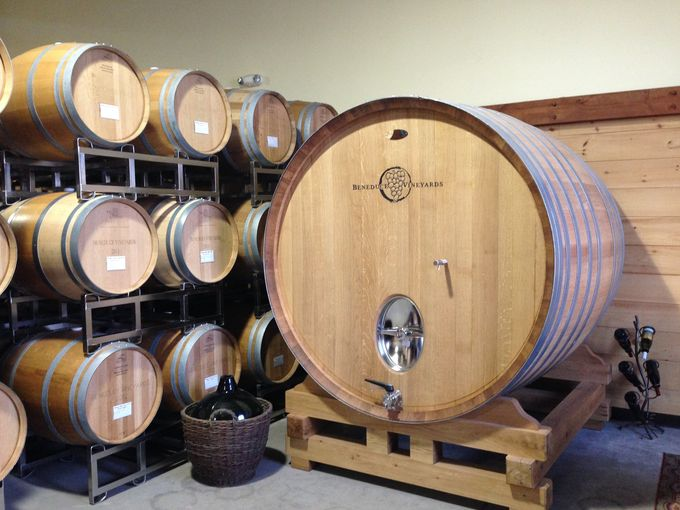 Winemaking De-mystified at Beneduce Vineyards