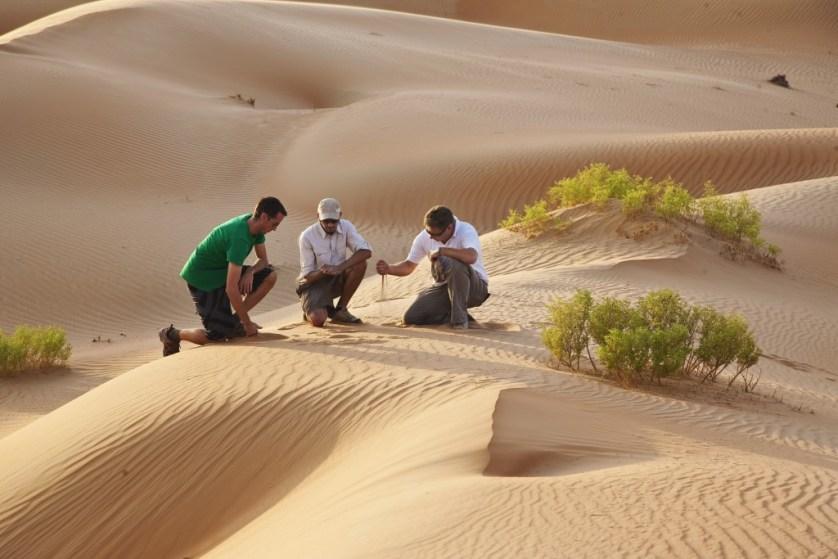 53714979-H1-Desert_walk