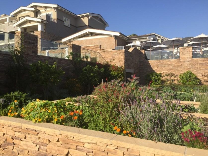 Chef's Studio Garden - Photo by Jill Weinlein