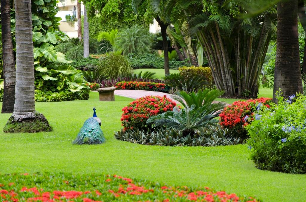 velas-vallarta-garden