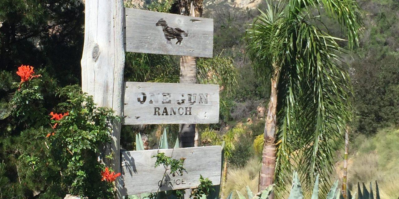 Luxury Biodynamic Farming in Malibu