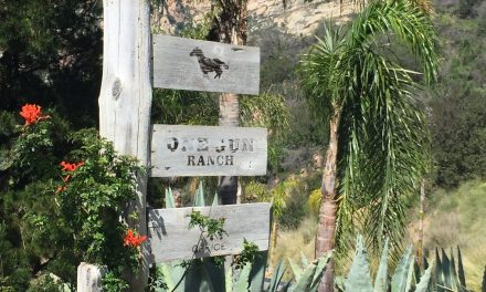 Luxury Biodynamic Farming in Malibu