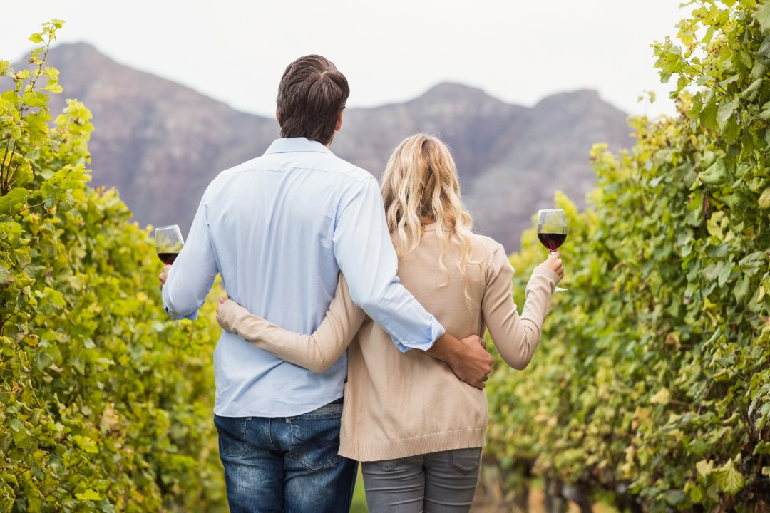Rear view of a young happy couple holding glasses of wine in the grape fields