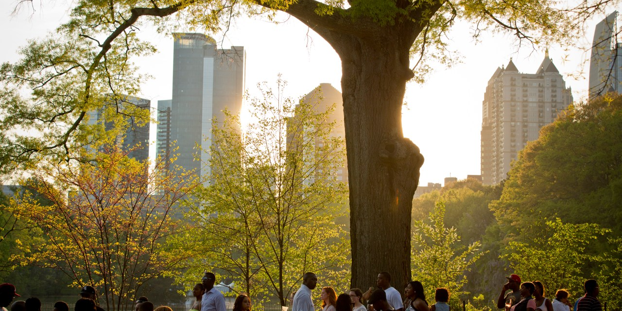 Countdown to Spring and the 82nd Annual Atlanta Dogwood Festival
