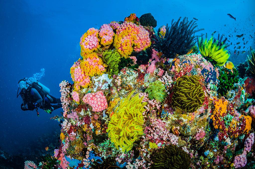 Sombrero Island 6 - Philippines by Jett Britnell