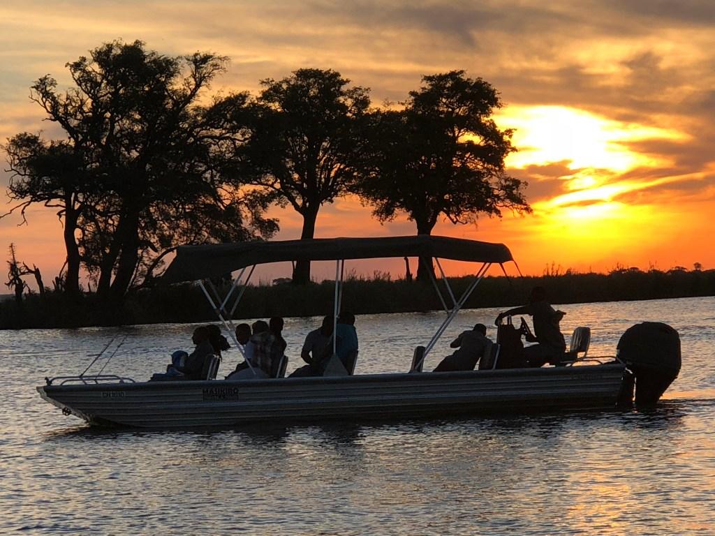 Chobe River safari put a pin in it Debbie Stone