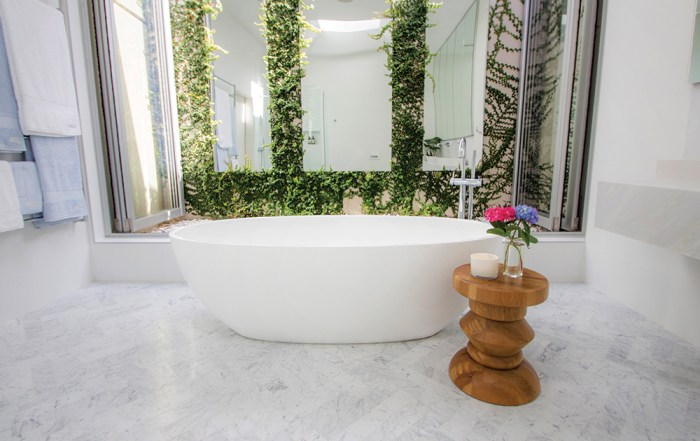 Domayne Victoria and Albert Bathroom Design Competition 2016 - Lillian Ajuria Barcelona Bath with outdoor atrium and vines. Bathroom garden with vines