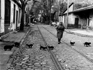 Les chats de Bercy ©Atelier Robert Doisneau