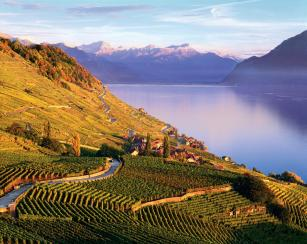 lavaux-credit-to-regis-colombo
