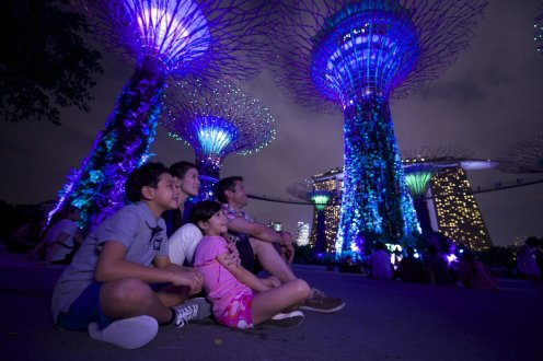 LuxeGetaways - Luxury Travel - Luxury Travel Magazine - Katie Dillon - LaJolla Mom - Family Travel - Singapore - Garden by the Bay - Supergrove Trees